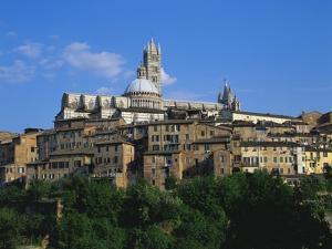 Cathedral, Siena, Tuscany, Italy by Richard Ashworth