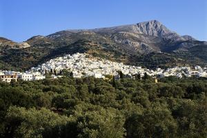 Filoti in Olive Groves, Tragea, Naxos, Cyclades, Greece by Richard Ashworth