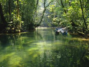 Longboats Moored in Creek Amid Rain Forest, Island of Borneo, Malaysia by Richard Ashworth
