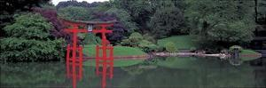 Japanese Garden by Richard Berenholtz