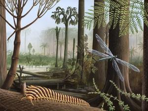 Carboniferous Insects, Artwork by Richard Bizley