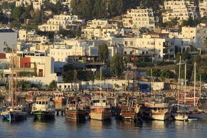 Boats in Bodrum, Turkey, Anatolia, Asia Minor, Eurasia by Richard
