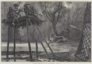 Tiger-Hunting in Mysore, India by Richard Caton Woodville II