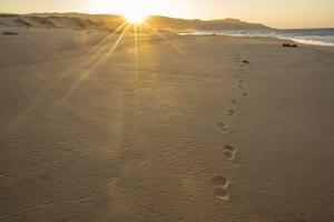 Sandy Shore at Mo'Omomi Beach, Sunset, Nature Conservancy, Molokai, Hawaii by Richard Cooke III