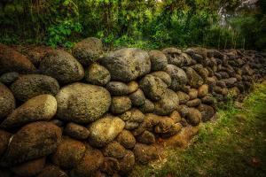 Stone Wall in Halawa Valley, Molokai, Hawaii by Richard Cooke III