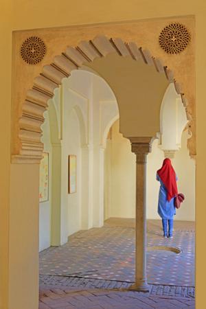 Alcazaba Palace, Malaga, Andalusia, Spain, Europe by Richard Cummins