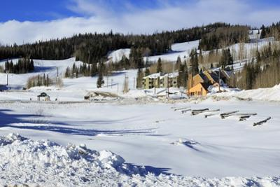 Brian Head Ski Resort, Utah, United States of America, North America by Richard Cummins