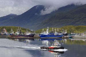 Carl E. Moses Boat Harbor, Dutch Harbor, Amaknak Island, Aleutian Islands, Alaska, USA by Richard Cummins