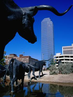 Cattle-Drive Sculptures at Pioneer Plaza, Dallas, Texas by Richard Cummins