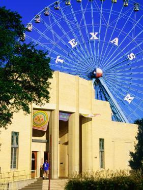Dallas Museum of Natural History at Fair Park, Dallas, Texas by Richard Cummins