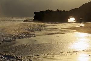 Lighthouse State Beach, Santa Cruz, California, United States of America, North America by Richard Cummins