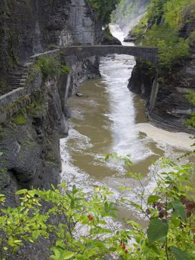 Lower Falls in Letchworth State Park, Rochester, New York State, USA by Richard Cummins