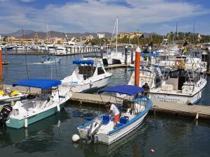 Marina, Cabo San Lucas, Baja California, Mexico, North America by Richard Cummins