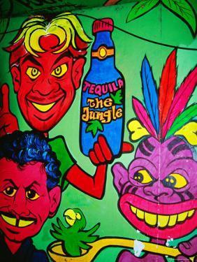 Mural in Jungle Bar, Cabo San Lucas, Baja California Sur, Mexico by Richard Cummins