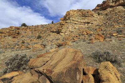 Parowan Gap Dinosaur Tracks and Remains, Iron County, Utah, United States of America, North America by Richard Cummins