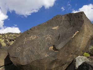 Petroglyph National Monument (Boca Negra Canyon), Albuquerque, New Mexico, United States of America by Richard Cummins