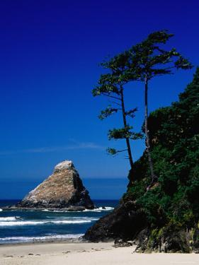 Rocky Outcrop at Heceta Head State Beach, Near Florence, Florence, Oregon by Richard Cummins