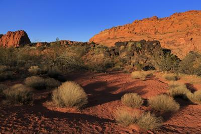 Snow Canyon State Park, St. George, Utah, United States of America, North America by Richard Cummins