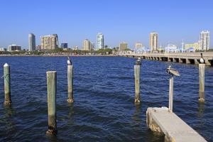 St. Petersburg Skyline, Tampa, Florida, United States of America, North America by Richard Cummins