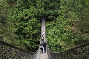 Suspension bridge, Lynn Canyon Park, Vancouver, British Columbia, Canada, North America by Richard Cummins