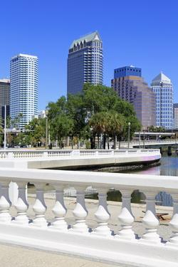 Tampa Skyline and Linear Park, Tampa, Florida, United States of America, North America by Richard Cummins
