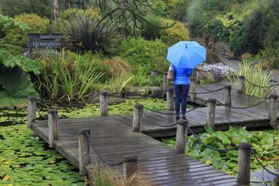 VanDusen Gardens, Vancouver, British Columbia, Canada, North America by Richard Cummins