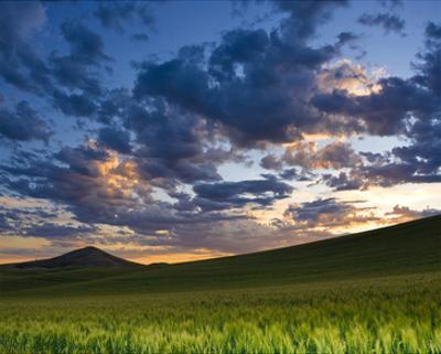 La Palouse Dawn near Steptoe by Richard Desmarais