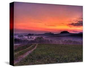 Val d'Arbia at Dawn by Richard Desmarais