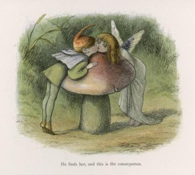 An Elf-Fairy Romance: He Finds Her and This is the Consequence by Richard Doyle