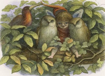 An Elf Fraternises with the Owls by Richard Doyle