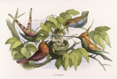 An Intruding Elf Makes Himself at Home in a Birds Nest by Richard Doyle