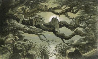 Fairies Asleep in the Moonlight by Richard Doyle