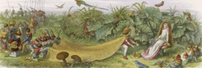 Fairy Prince Pays Court to a Fairy Inviting Her to Share His Crown by Richard Doyle