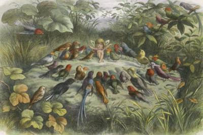Musical Elf Teaches the Young Birds to Sing by Richard Doyle