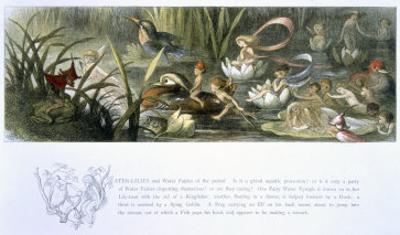 Water-Lilies and Water Fairies by Richard Doyle