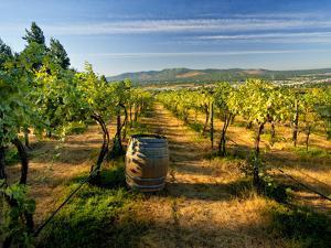 Arbor Crest Wine Cellars in Spokane, Washington, USA by Richard Duval