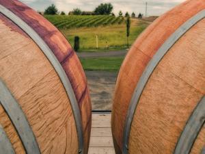 Barrels in Walla Walla Wine Country, Walla Walla, Washington, USA by Richard Duval