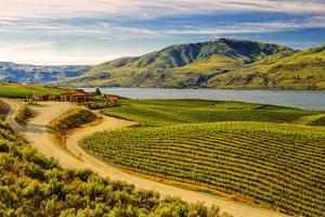 Benson Vineyards Estate Winery, Lake Chelan, Washington, USA by Richard Duval