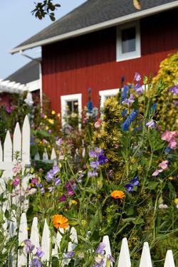 Greenbank Farm, Whidbey Island, Washington, USA by Richard Duval