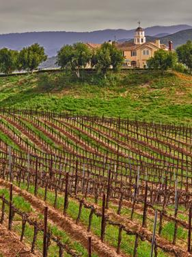 Leoness Cellars, Temecula, California, USA by Richard Duval