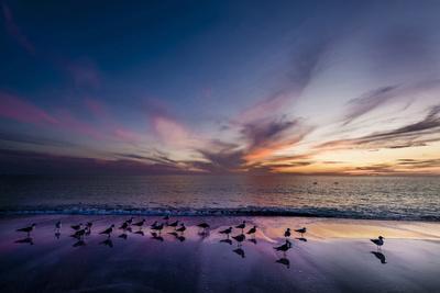 Sunset on Anna Marie Island on Florida's Gulf Coast Florida, USA