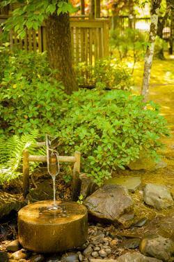 Torii Mor's Asian-Inspired Tasting Room Is Immediately Adjacent to Serene Japanese Garden by Richard Duval
