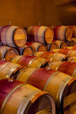 USA, Washington, Red Mountain. Barrel Cellar in Washington Winery by Richard Duval