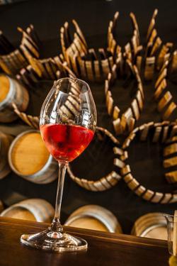 USA, Washington State, Seattle, wineries. by Richard Duval