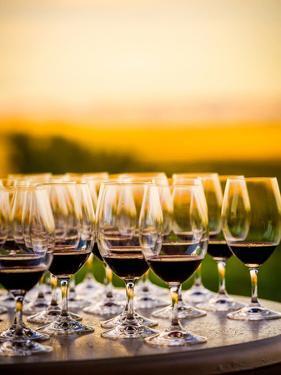 USA, Washington, Walla Walla. Tasting at Winery in Wine Country by Richard Duval