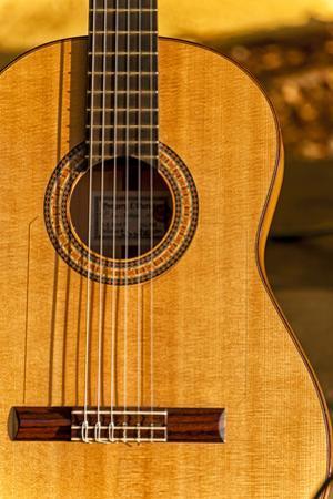 USA, Washington, Woodinville. Spanish Guitar