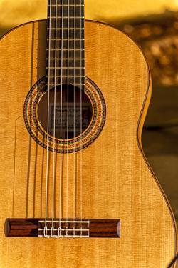USA, Washington, Woodinville. Spanish Guitar by Richard Duval