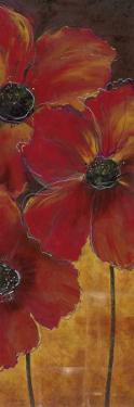Midnight Poppy II by Richard Henson