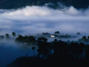 Low Cloud Surrounding House Within Forest, Sagada, Mountain, Philippines, Ilocos by Richard I'Anson