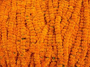 Marigolds for Sale at Flower Market Below Howrah Bridge, Kolkata, India by Richard I'Anson